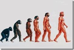 evolution_124448k